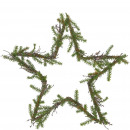 Star Juniper, D40cm, green